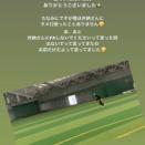 横浜DeNAファンのオフシーズンwxwxwxwxwxw