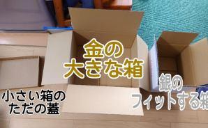 猫にダンボール箱を選ばせてみた
