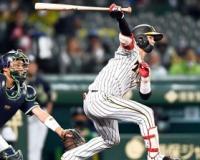 ドラ6中野拓夢(遊ニ) .276 1本35打点29盗塁ops .657