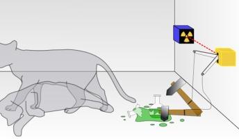 【量子力学】シュレーディンガーの猫、救われる