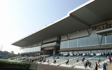 『サマーチャンピオン 予想見解(8/12佐賀競馬)』の画像