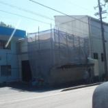 『桜井ブルー2』の画像