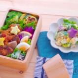 『シャリアピン苦戦中・お弁当の残りを晩御飯に回す』の画像
