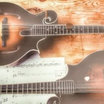 maedolin的 - 瀬戸内のんびり音楽生活