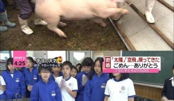 教師「生徒に豚育てさせて食わせたろ!」