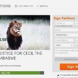 『セシル続報:これ以上ライオンを殺さないために。』の画像