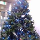 『クリスマスツリー』の画像