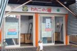 本物の看板犬!?看板犬タロウもいる「わんこの湯」という犬のお風呂セルフサービス施設が交野にはある!