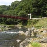 息子が釣った良型ヤマメ 2009.08.04(火)谷村町・桂川のサムネイル