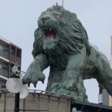 【衝撃】サファリパークでライオンがバスの中に飛び込んできた!→結果・・・