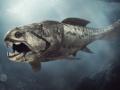 【画像】3億年前の海を支配していた魚怖すぎて草