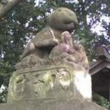 『うさぎの神社』の画像