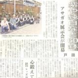 『(埼玉新聞)紫や純白など60鉢 朝霞展示会が開幕 戸田』の画像