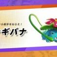 【ポケモンユナイト】鈴アンプチョッキ30なんでもなおしバナが一番勝てるわ