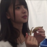 『【乃木坂46】さゆりんご軍団に新メンバー齋藤飛鳥??』の画像