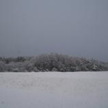 『干し柿・雪景色』の画像
