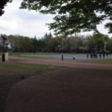 『4月初旬の都立東大和南公園Ⅱ』の画像
