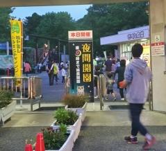 大好評企画!夜の動物園を楽しもう!『ファミリーパーク』が21時まで延長開園!『ナイトズー』8月15日、29日開催。