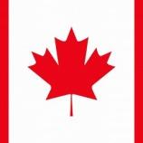『【朗報】カナダへ短期就学をご検討されている学生さんへ朗報です!(2020/11/05 updated)』の画像