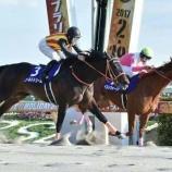 『2017年G1レース勝ち馬予想の答え合わせ vol.912』の画像