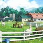 【モバマス】アイドルプロデュース はじめてのキャンプ アルパカ牧場 コミュイベントまとめ