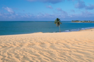 カイトサーフィンやるならブラジルでしょ!