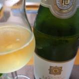 『Henri Leblanc Blanc de Blancs Brut(アンリ・ルブラン ブラン・ド・ブラン ブリュット)とトマトクリームシチュー』の画像