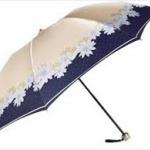 お前ら、Amazonで「折りたたみ傘」で検索してみろwwww