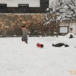 『はじめての雪あそび☆』の画像