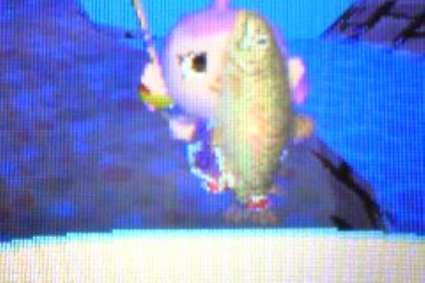 おいでよどうぶつの森 魚