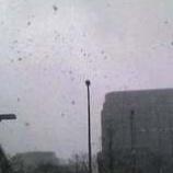 『雪の中でハッと気が付きました』の画像