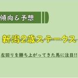 『【予想/買い目】新潟2歳S&キーンランドC_2020。』の画像