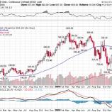『【米国株大暴落】金やビットコインがヘッジの役割を果たしていないことについて【悲観する必要なし】』の画像