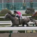 ストラディヴァリオ(06/03/18・1R・阪神競馬場)