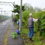 『9月1日桔梗駅草刈りボランティア募集!』の画像