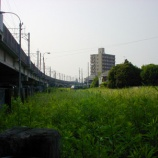 『(日経新聞)埼京線 きょう開業30年「子育て路線」地域に根ざす』の画像