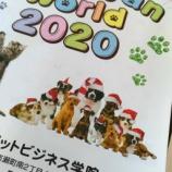 『2020カレンダーできました』の画像