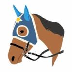 重馬場はこの血統・種牡馬で稼げ2020年版~道悪競馬予想~