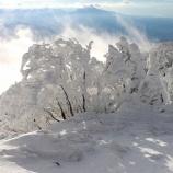 『雪』の画像