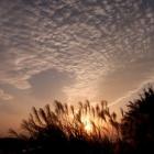 『夕日』の画像