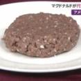 マクドナルドからもついに代替肉バーガー登場 試験販売開始 今後のスタンダードになるか