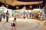 武道館で『わんぱく相撲大会』が開催されました~そして、これが厳格なる「おふん」のたたみ方だ!~