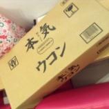 『本MAJI気ウコン!!』の画像
