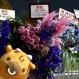 『【乃木坂46】『吉野家』が若月卒セレへ!最後に素晴らしい言葉を残す・・・【若月佑美 卒業セレモニー@日本武道館】』の画像