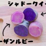 『紫とピンク!カラフルなジャガイモで作るカリカリポテトフライ』の画像