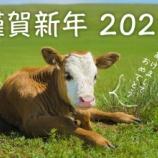 『2021年がスタートしました!』の画像