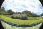 私市植物園の園内マップの開花情報が更新されたみたい!