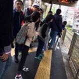 『【早稲田】花見~飛鳥山公園にて♪』の画像