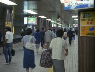 【画像】地方の駅のホームの風景wwwwww