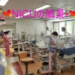 聖マリアンナ医科大学病院 看護部公式ブログ ーMari Cafeー